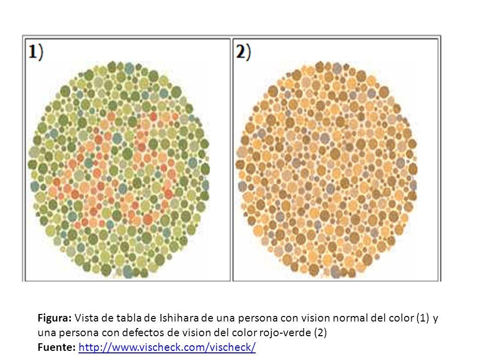 Figura: Vista de tabla de Ishihara de una persona con vision normal del color (1) y una persona con defectos de vision del color rojo-verde (2) Fuente