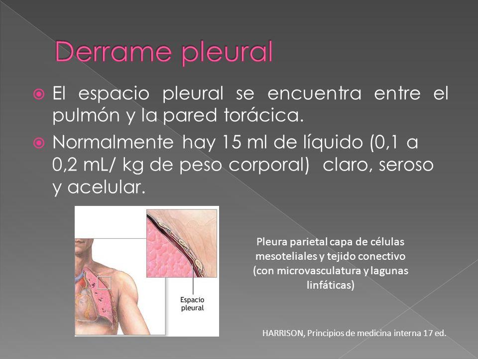 El espacio pleural se encuentra entre el pulmón y la pared torácica. Normalmente hay 15 ml de líquido (0,1 a 0,2 mL/ kg de peso corporal) claro, seros
