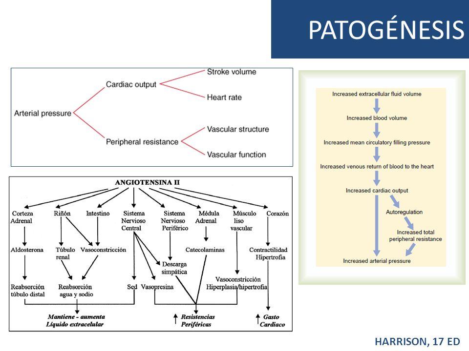 PATOGÉNESIS HARRISON, 17 ED