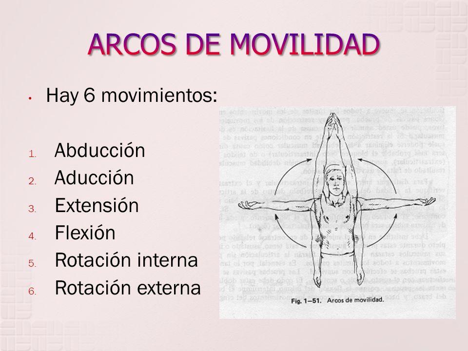Hay 6 movimientos: 1. Abducción 2. Aducción 3. Extensión 4. Flexión 5. Rotación interna 6. Rotación externa