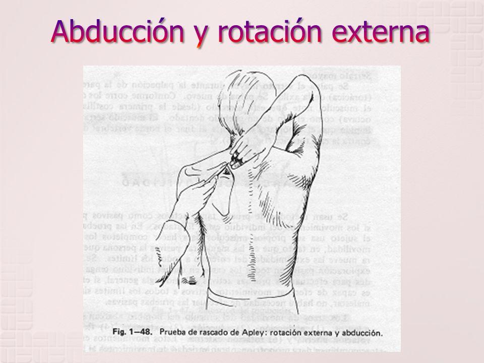 TUNEL CARPIANO Se encuentra en la profundidad del músculo palmar menor.