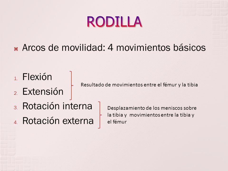 Arcos de movilidad: 4 movimientos básicos 1. Flexión 2. Extensión 3. Rotación interna 4. Rotación externa Resultado de movimientos entre el fémur y la
