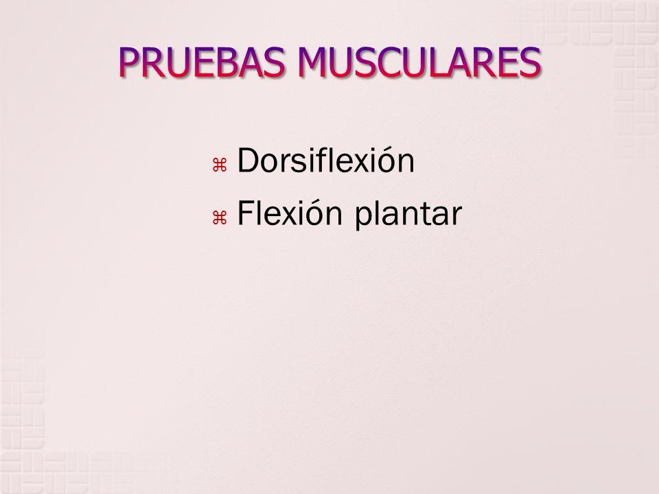 Dorsiflexión Flexión plantar