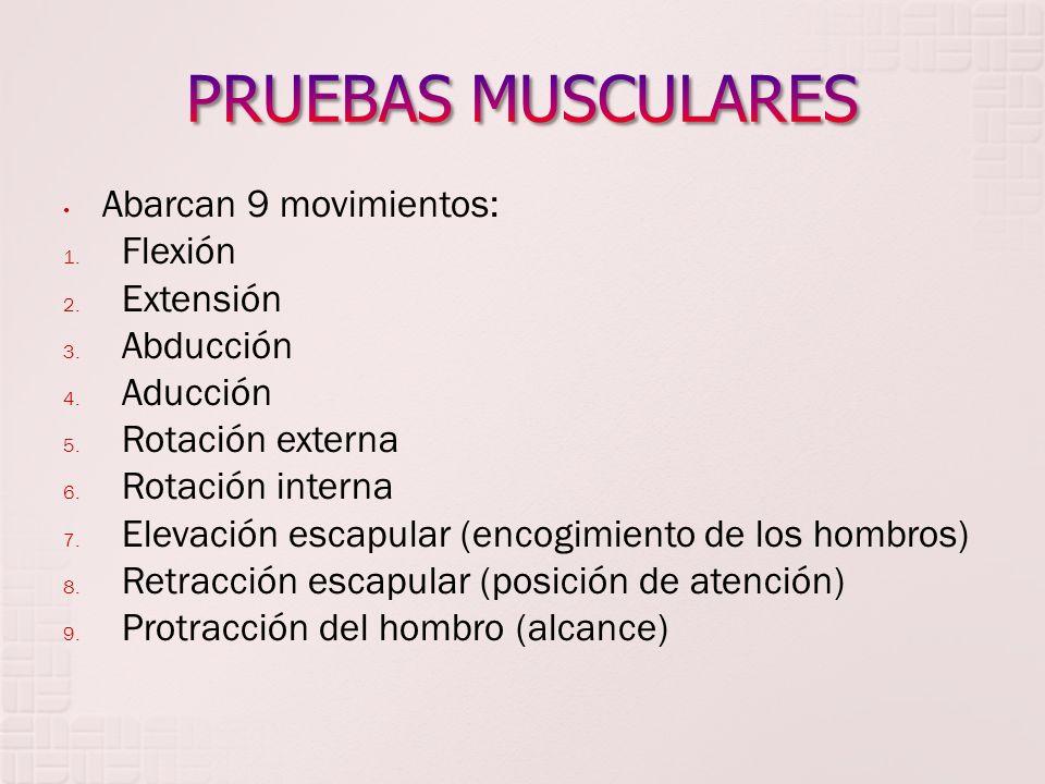 Flexión (135°): la persona debe ser capaz de tocarse la parte anterior del hombro.