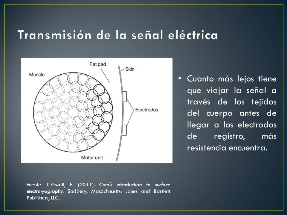 Cuanto más lejos tiene que viajar la señal a través de los tejidos del cuerpo antes de llegar a los electrodos de registro, más resistencia encuentra.