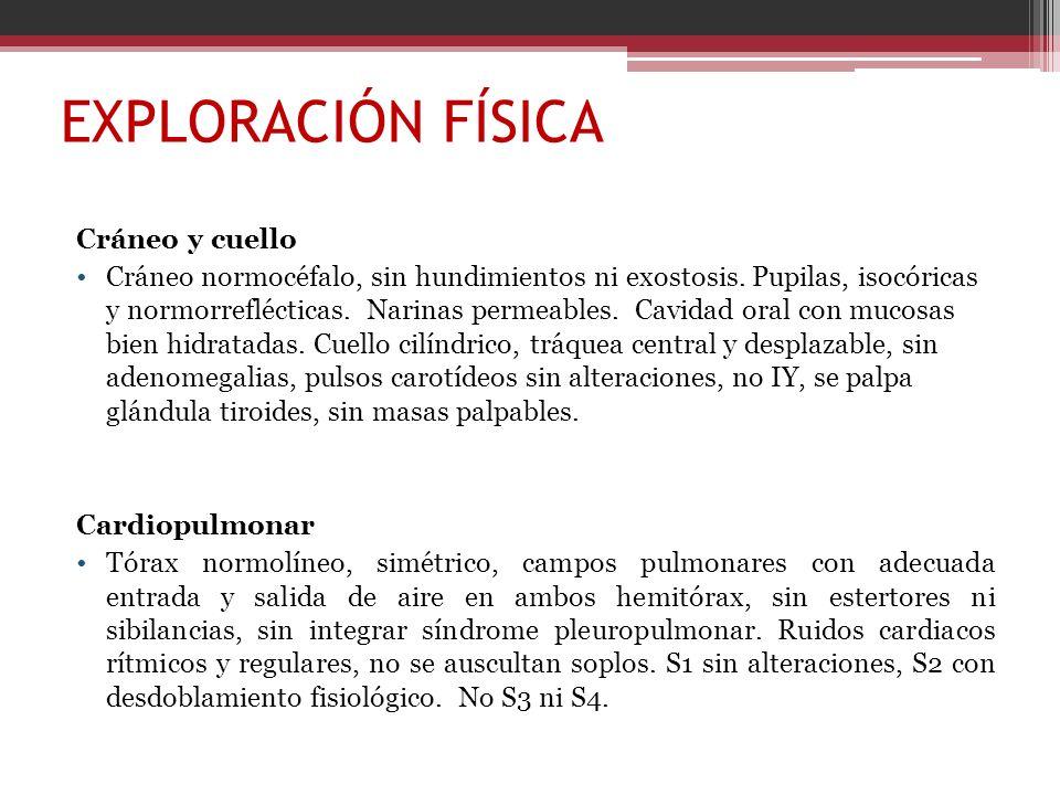 EXPLORACIÓN FÍSICA Cráneo y cuello Cráneo normocéfalo, sin hundimientos ni exostosis. Pupilas, isocóricas y normorreflécticas. Narinas permeables. Cav