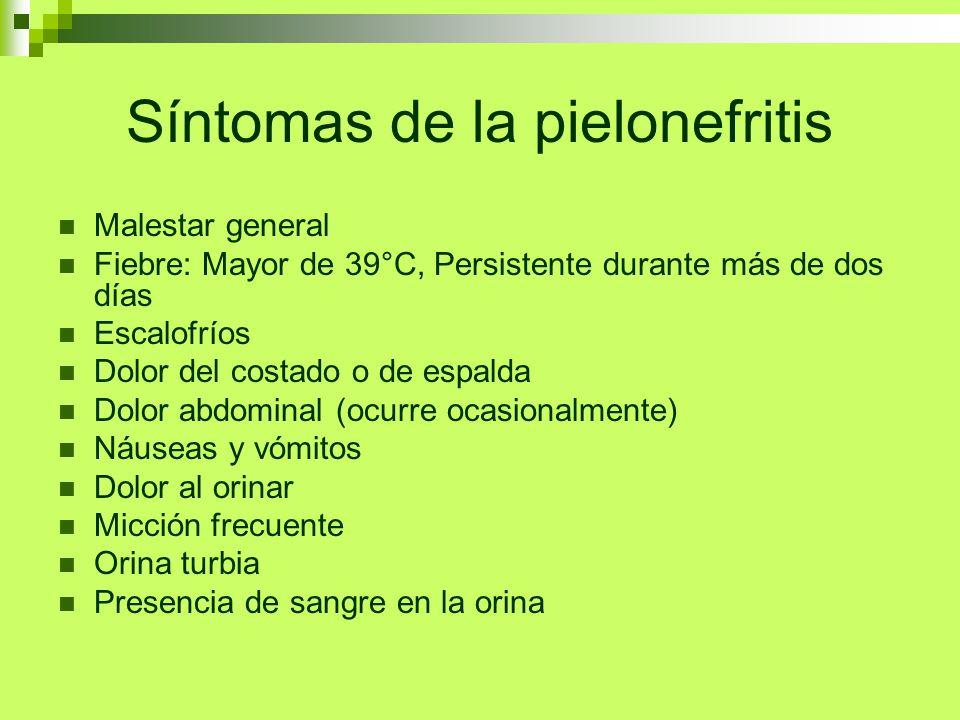 Síntomas de la pielonefritis Malestar general Fiebre: Mayor de 39°C, Persistente durante más de dos días Escalofríos Dolor del costado o de espalda Do