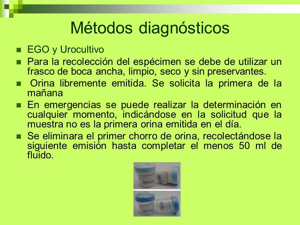 Métodos diagnósticos EGO y Urocultivo Para la recolección del espécimen se debe de utilizar un frasco de boca ancha, limpio, seco y sin preservantes.