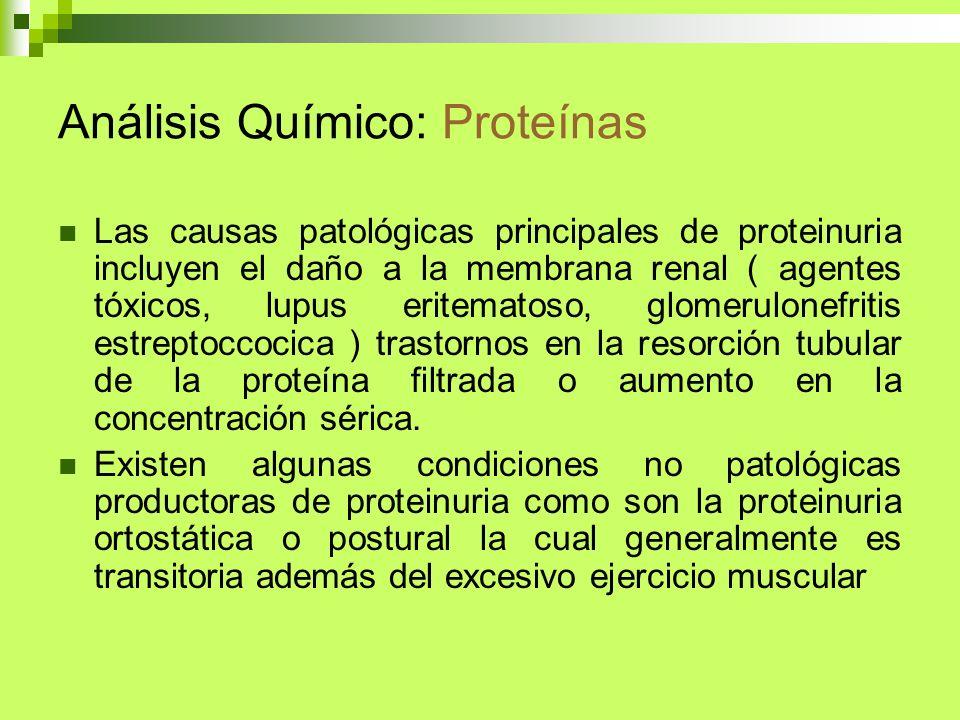 Análisis Químico: Proteínas Las causas patológicas principales de proteinuria incluyen el daño a la membrana renal ( agentes tóxicos, lupus eritematos