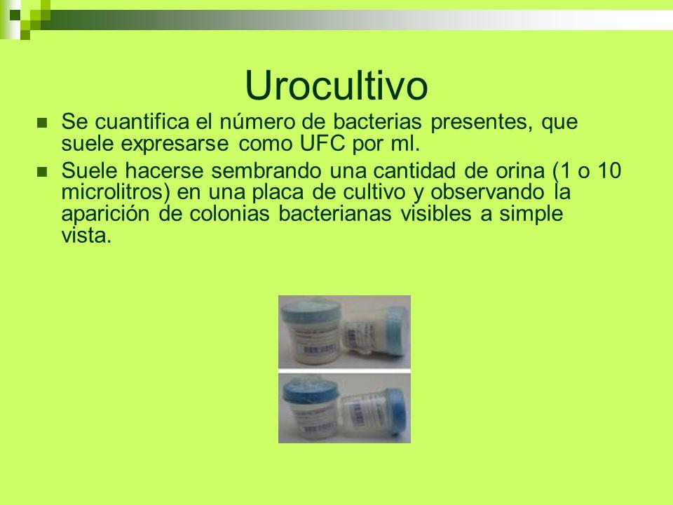 Urocultivo Se cuantifica el número de bacterias presentes, que suele expresarse como UFC por ml. Suele hacerse sembrando una cantidad de orina (1 o 10