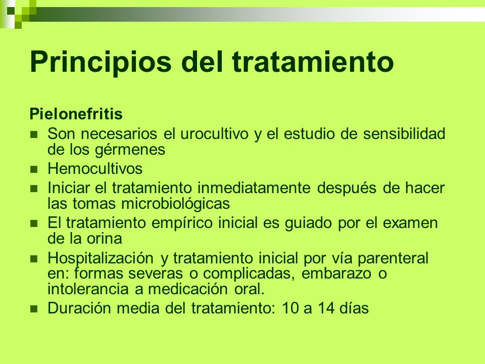 Principios del tratamiento Pielonefritis Son necesarios el urocultivo y el estudio de sensibilidad de los gérmenes Hemocultivos Iniciar el tratamiento