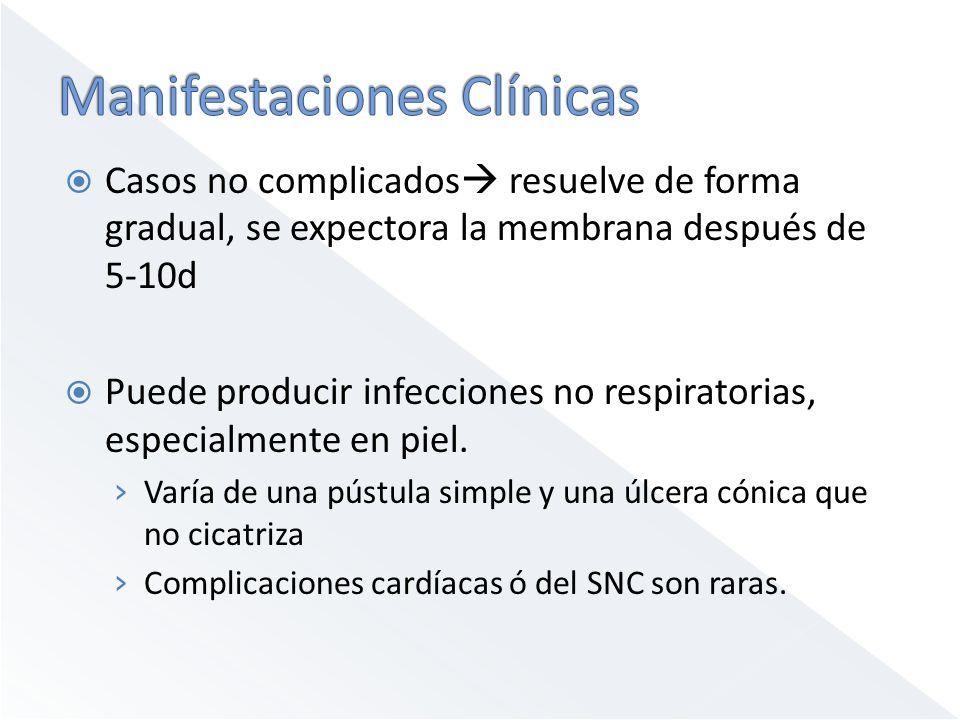 Casos no complicados resuelve de forma gradual, se expectora la membrana después de 5-10d Puede producir infecciones no respiratorias, especialmente e