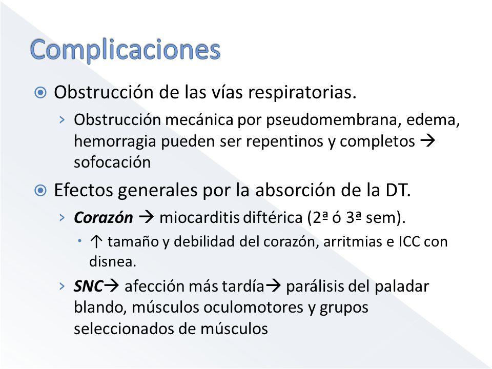Obstrucción de las vías respiratorias. Obstrucción mecánica por pseudomembrana, edema, hemorragia pueden ser repentinos y completos sofocación Efectos