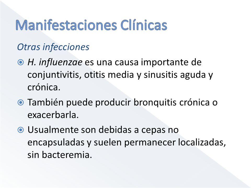 Otras infecciones H. influenzae es una causa importante de conjuntivitis, otitis media y sinusitis aguda y crónica. También puede producir bronquitis