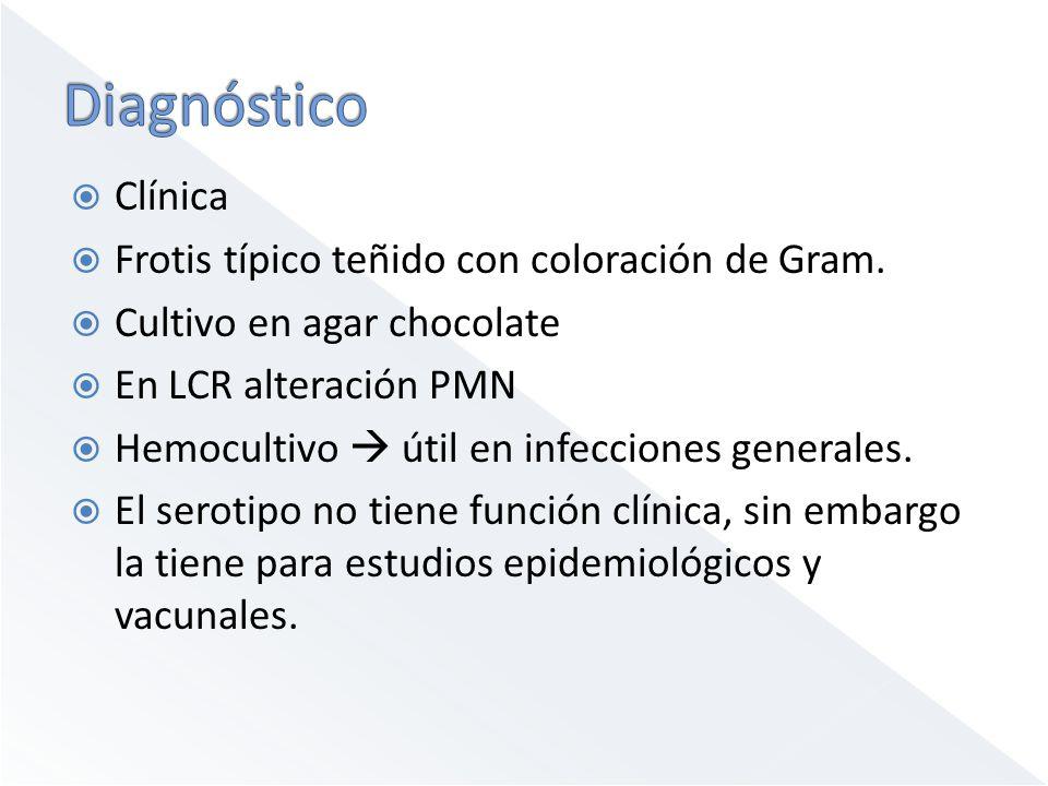 Clínica Frotis típico teñido con coloración de Gram. Cultivo en agar chocolate En LCR alteración PMN Hemocultivo útil en infecciones generales. El ser