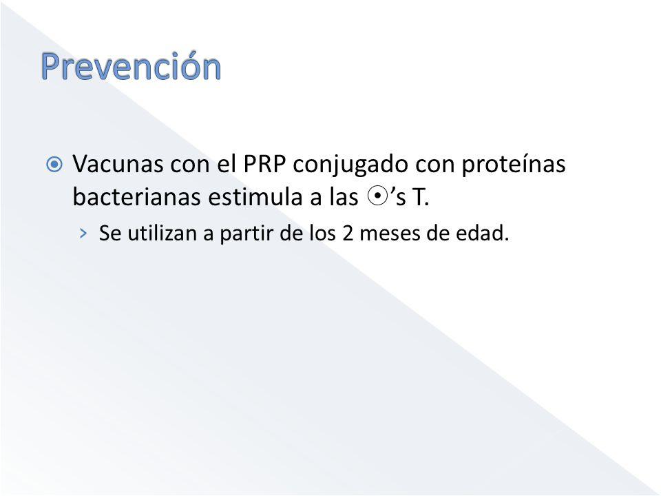 Vacunas con el PRP conjugado con proteínas bacterianas estimula a las s T. Se utilizan a partir de los 2 meses de edad.
