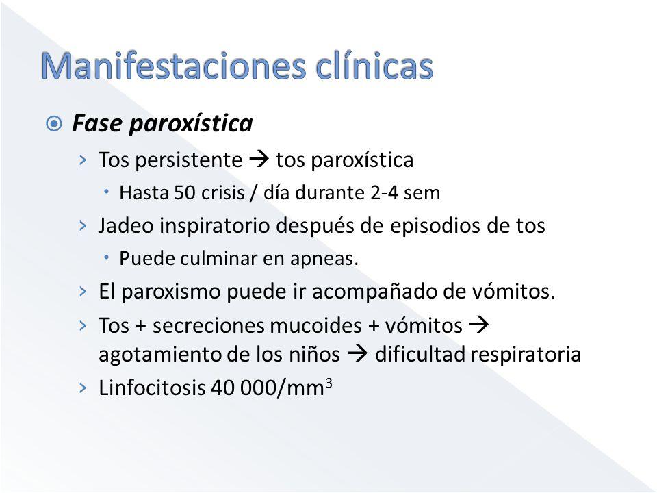 Fase paroxística Tos persistente tos paroxística Hasta 50 crisis / día durante 2-4 sem Jadeo inspiratorio después de episodios de tos Puede culminar e