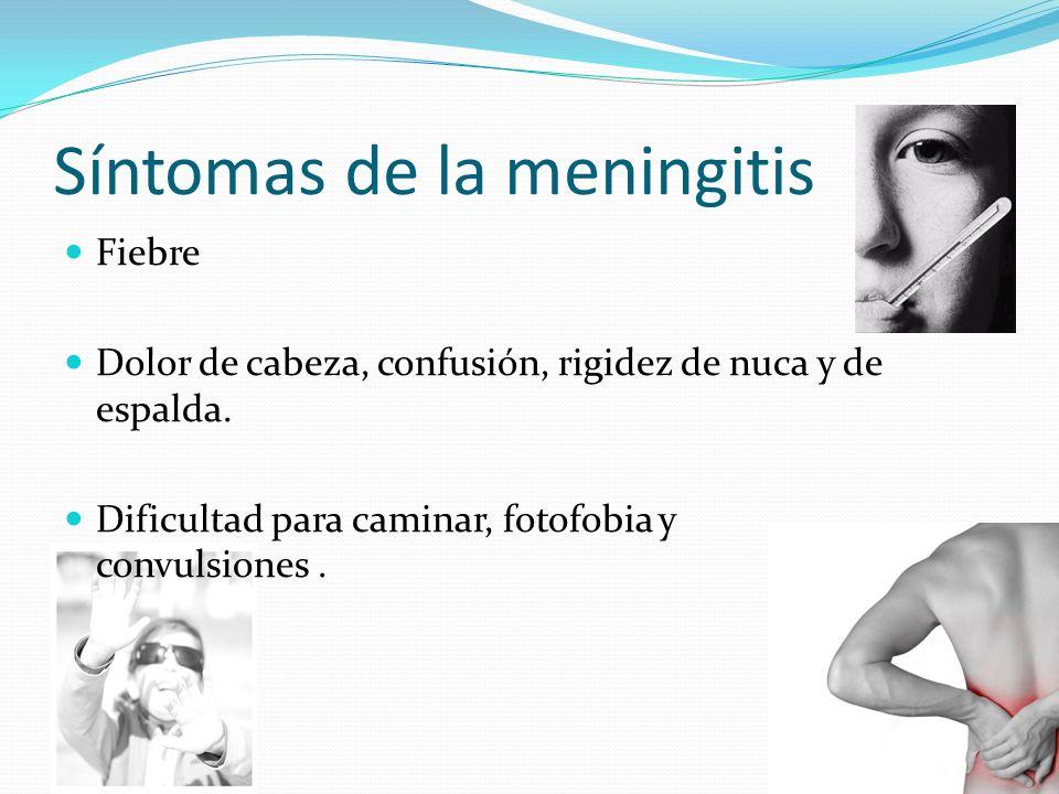 Síntomas de la meningitis Fiebre Dolor de cabeza, confusión, rigidez de nuca y de espalda. Dificultad para caminar, fotofobia y convulsiones.