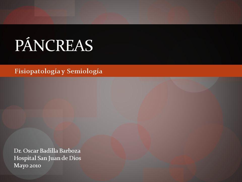 Agenda Anatomía Fisiología Islotes de Langerhans Insulina Diabetes