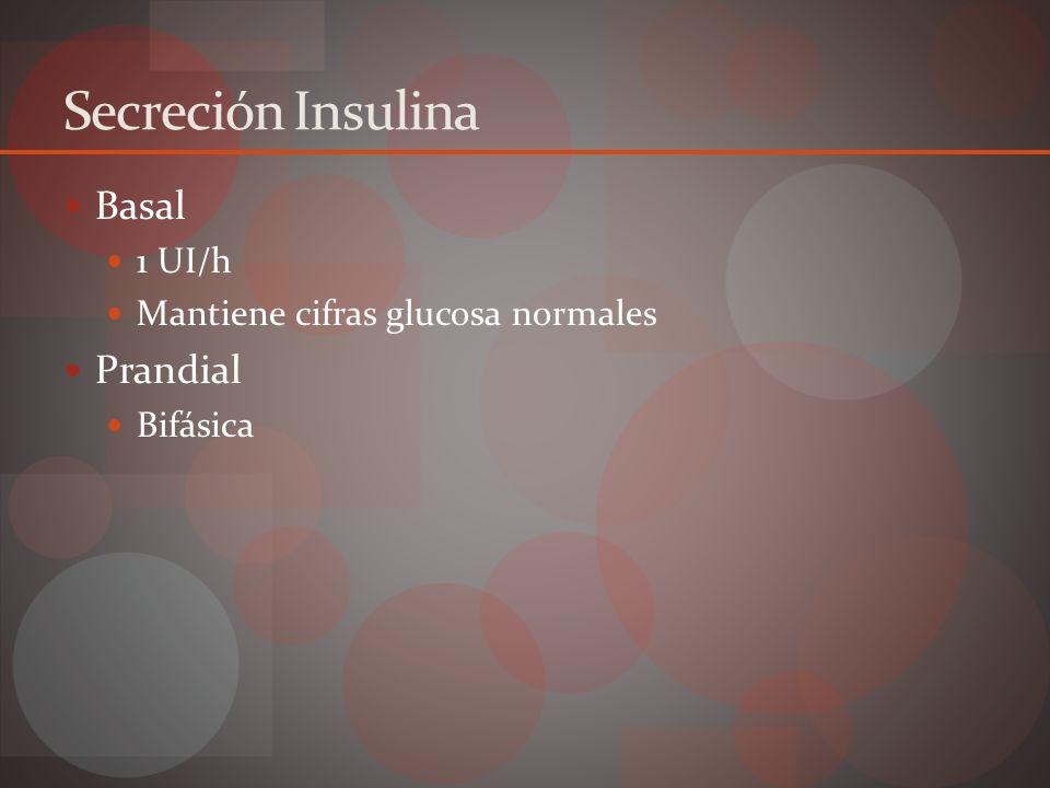 Secreción Bifásica Primera fase Inmediata estímulo ( <1 min) Pico máximo 3 a 5 min Duración 10 min Insulina almacenada