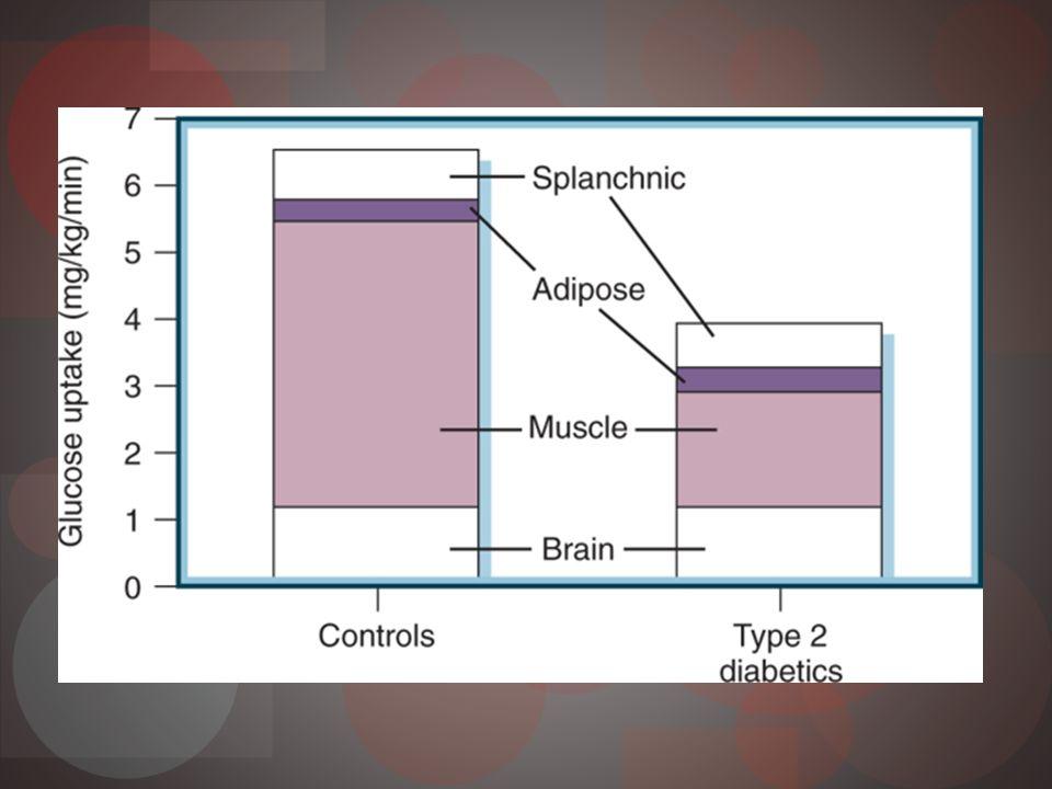 Tejido adiposo e insulina Ácidos grasos libres en forma TG en adipocitos Insulina Inhibe lipoproteínlipasa Inhibe lipolisis Inhibe liberación AGL