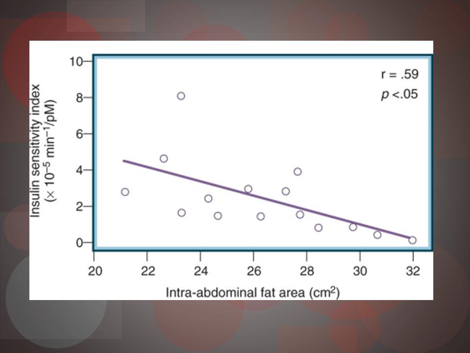 Pérdida primera fase secreción insulina Hipeglicemia posprandial Segunda fase exagerada Hiperinsulinemia crónica Down-regulation receptores insulina Resistencia insulina