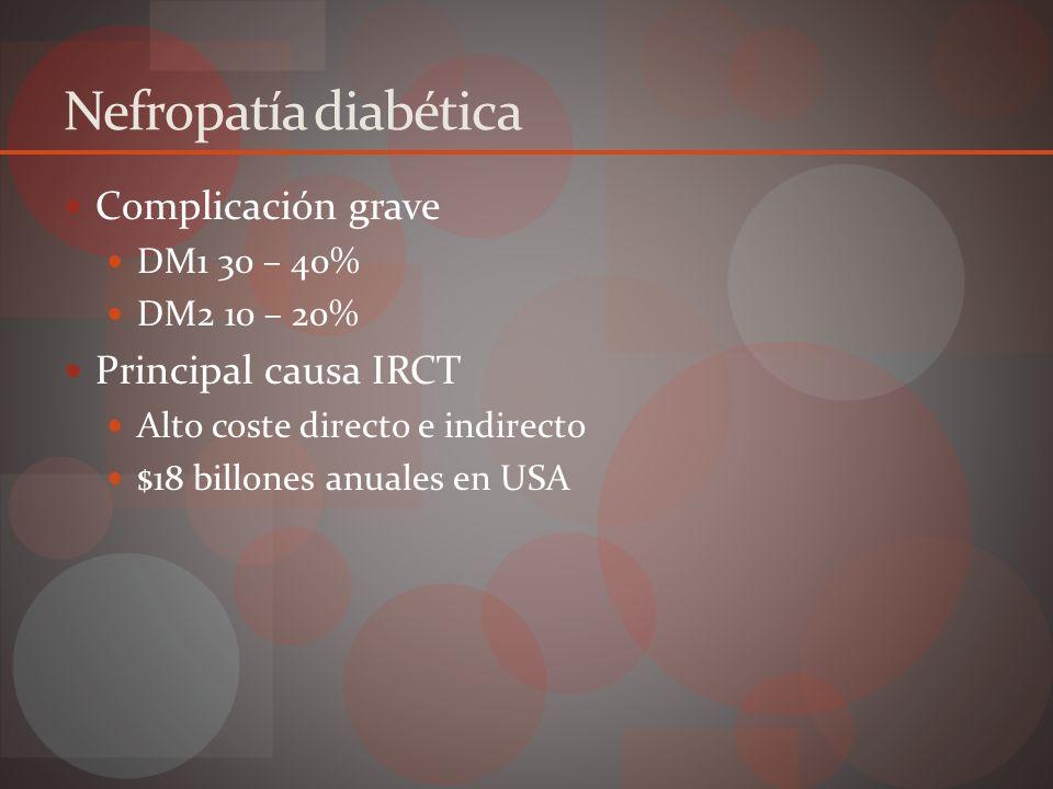 Nefropatía diabética Factores de riego Hiperglicemia Historia familiar nefropatía diabética HTA Retinopatía diabética Hiperlipidemia ITU recurrente