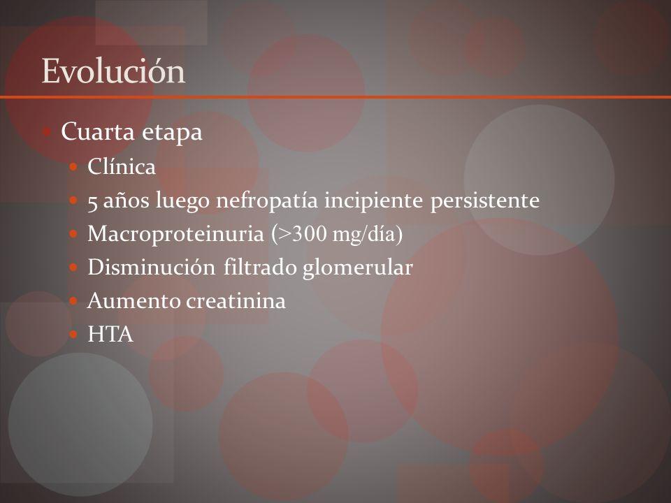 Evolución Quinta etapa 5 a 10 luego proteinuria persistente ACE < 25 – 30 mL/min IRCT
