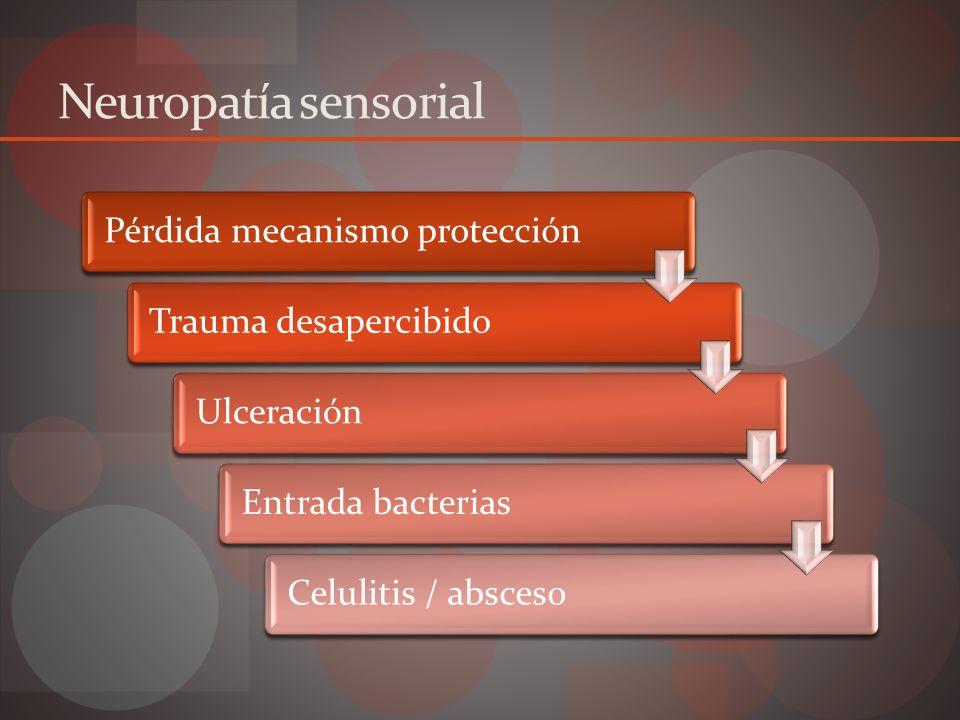 Neuropatía motora Atrofia muscular Deformidad pie Biomecanismos alterados Zonas de alta presión Trauma desapercibido