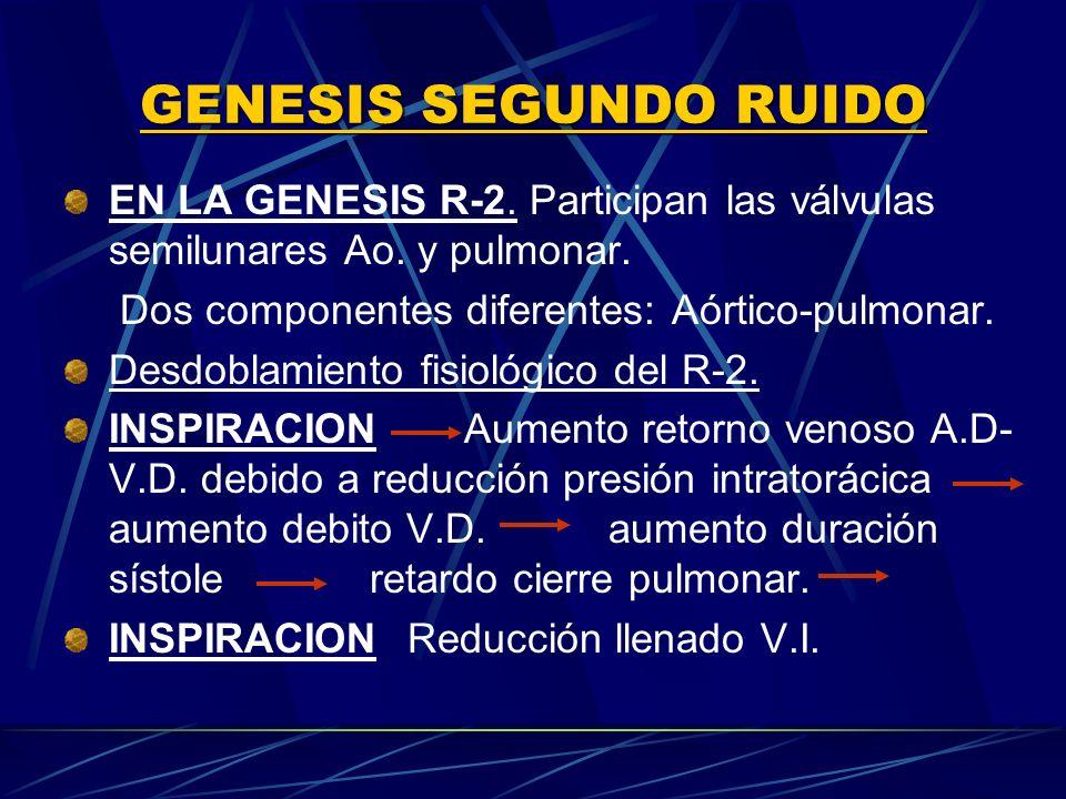 GENESIS SEGUNDO RUIDO EN LA GENESIS R 2. Participan las válvulas semilunares Ao. y pulmonar. Dos componentes diferentes: Aórtico-pulmonar. Desdoblamie
