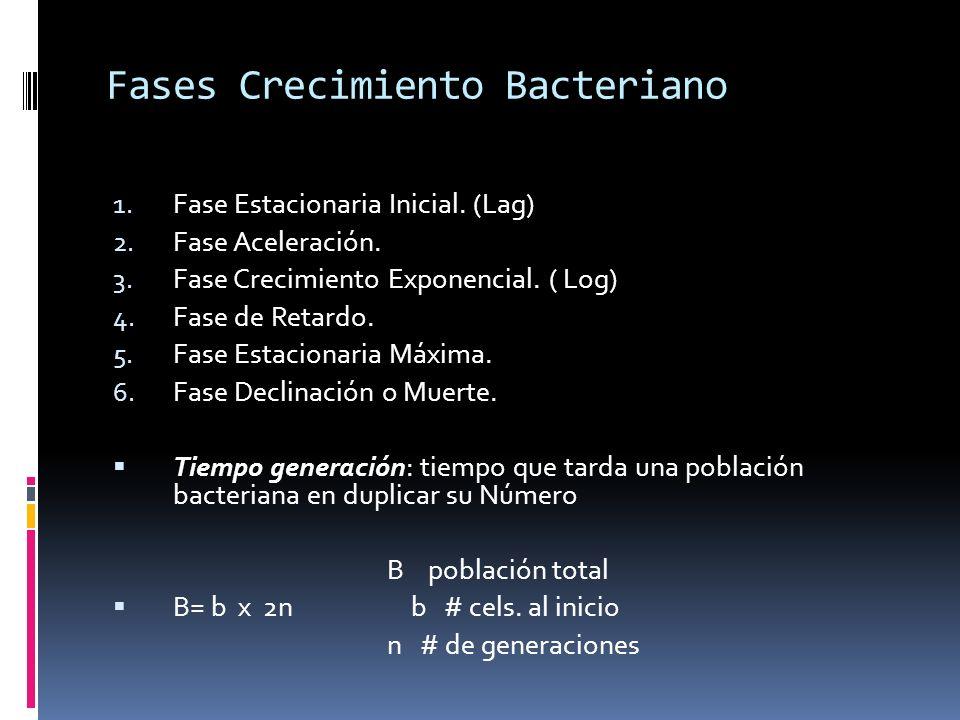 Fases Crecimiento Bacteriano 1. Fase Estacionaria Inicial. (Lag) 2. Fase Aceleración. 3. Fase Crecimiento Exponencial. ( Log) 4. Fase de Retardo. 5. F