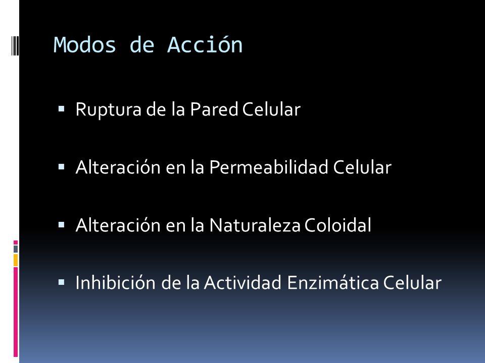 Modos de Acción Ruptura de la Pared Celular Alteración en la Permeabilidad Celular Alteración en la Naturaleza Coloidal Inhibición de la Actividad Enz