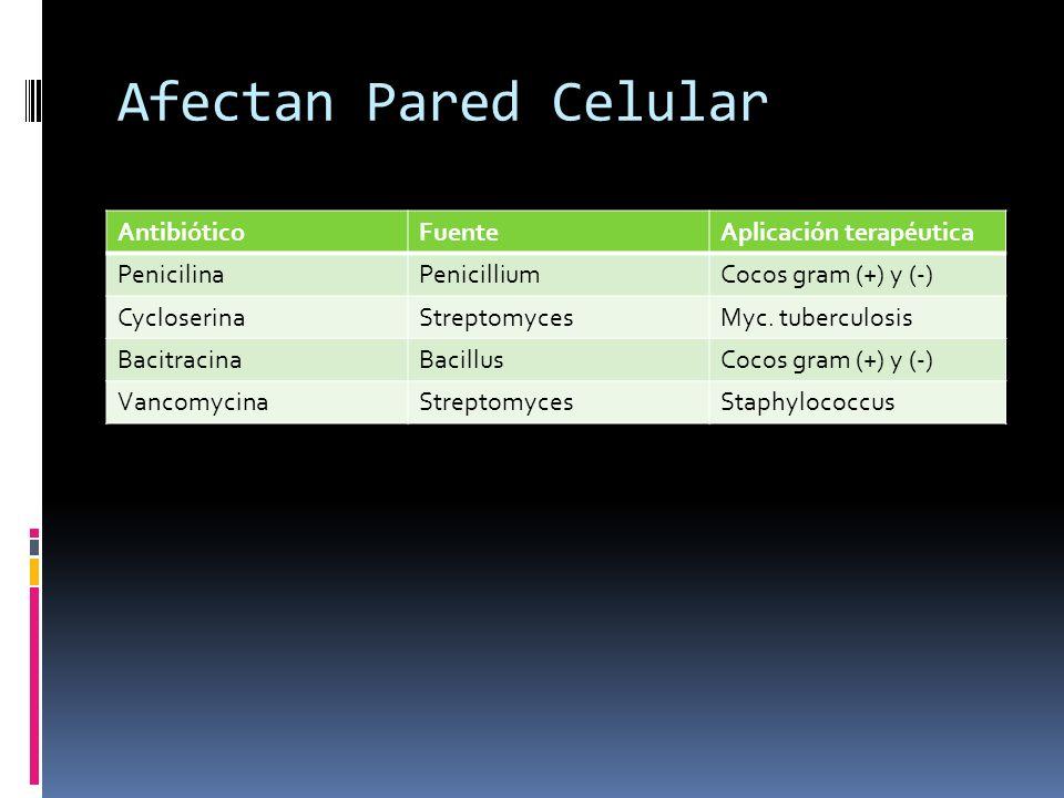 Afectan Pared Celular AntibióticoFuenteAplicación terapéutica PenicilinaPenicilliumCocos gram (+) y (-) CycloserinaStreptomycesMyc. tuberculosis Bacit