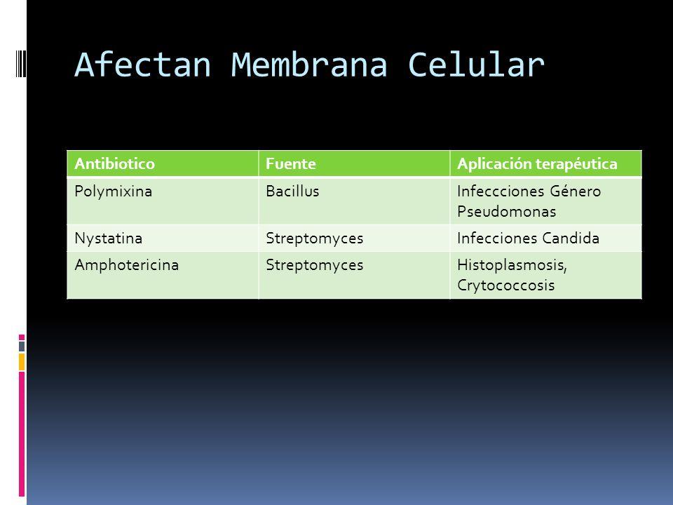 Afectan Membrana Celular AntibioticoFuenteAplicación terapéutica PolymixinaBacillusInfeccciones Género Pseudomonas NystatinaStreptomycesInfecciones Ca