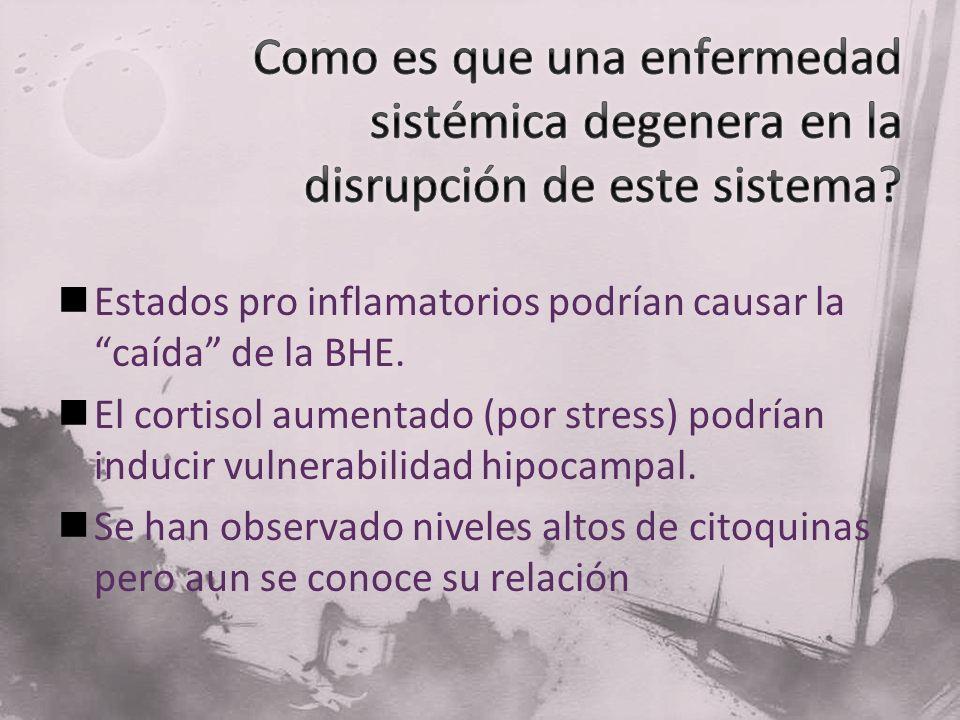Estados pro inflamatorios podrían causar la caída de la BHE. El cortisol aumentado (por stress) podrían inducir vulnerabilidad hipocampal. Se han obse