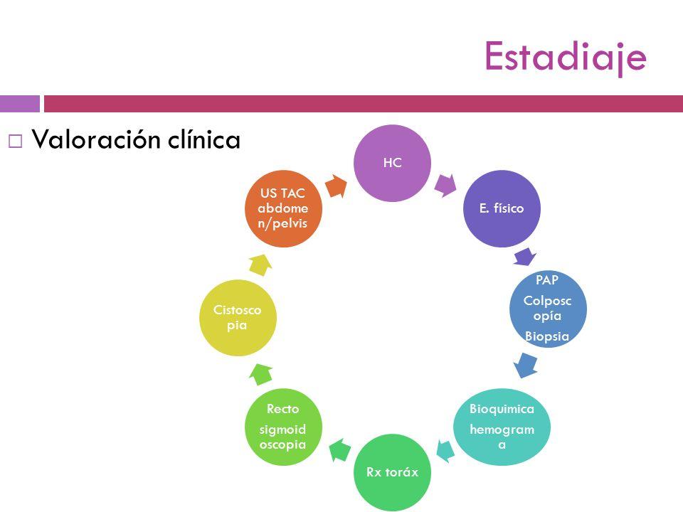 Estadiaje Valoración clínica HCE. físico PAP Colposc opía Biopsia Bioquimica hemogram a Rx toráx Recto sigmoid oscopia Cistosco pia US TAC abdome n/pe