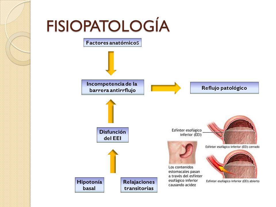 FISIOPATOLOGÍA Factores anatómico s Incompetencia de la barrera antirrflujo Disfunción del EEI Hipotonía basal Relajaciones transitorias Reflujo patol