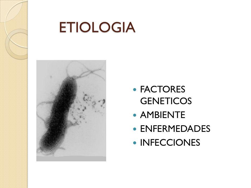 ETIOLOGIA FACTORES GENETICOS AMBIENTE ENFERMEDADES INFECCIONES