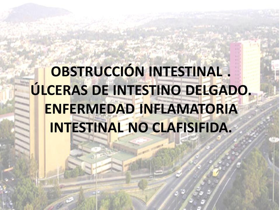 OBSTRUCCIÓN INTESTINAL. ÚLCERAS DE INTESTINO DELGADO. ENFERMEDAD INFLAMATORIA INTESTINAL NO CLAFISIFIDA.