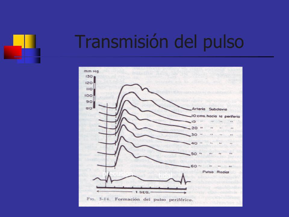 Transmisión del pulso precusion tidal