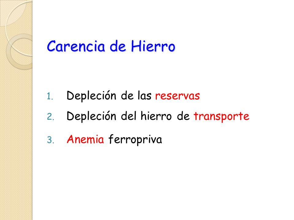Carencia de Hierro 1. Depleción de las reservas 2. Depleción del hierro de transporte 3. Anemia ferropriva
