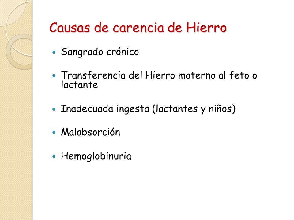 Causas de carencia de Hierro Sangrado crónico Transferencia del Hierro materno al feto o lactante Inadecuada ingesta (lactantes y niños) Malabsorción