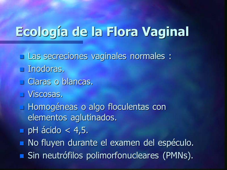 Ecología de la Flora Vaginal n Las secreciones vaginales normales : n Inodoras. n Claras o blancas. n Viscosas. n Homogéneas o algo floculentas con el