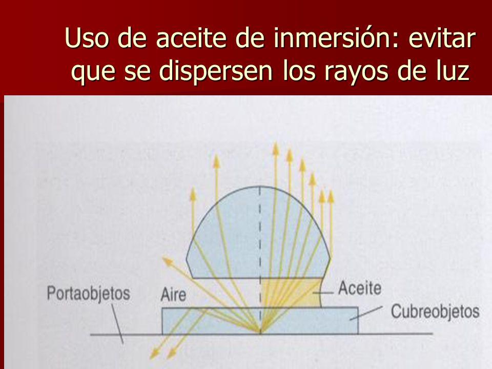 Uso de aceite de inmersión: evitar que se dispersen los rayos de luz