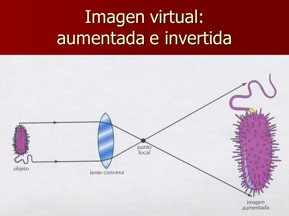 Imagen virtual: aumentada e invertida