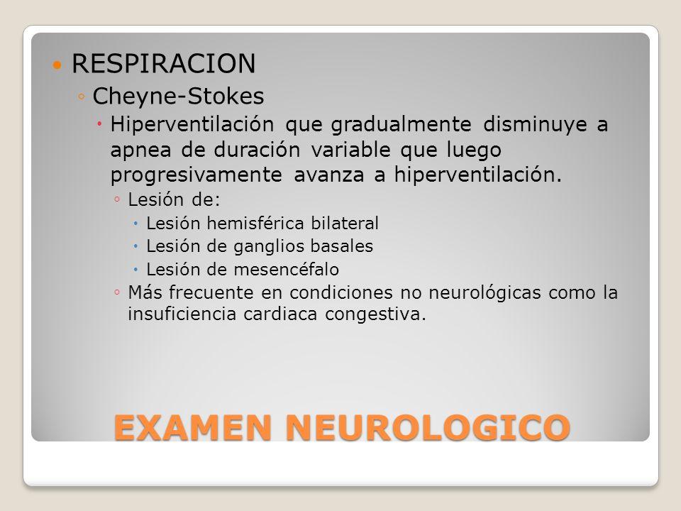 EXAMEN NEUROLOGICO RESPIRACION Cheyne-Stokes Hiperventilación que gradualmente disminuye a apnea de duración variable que luego progresivamente avanza