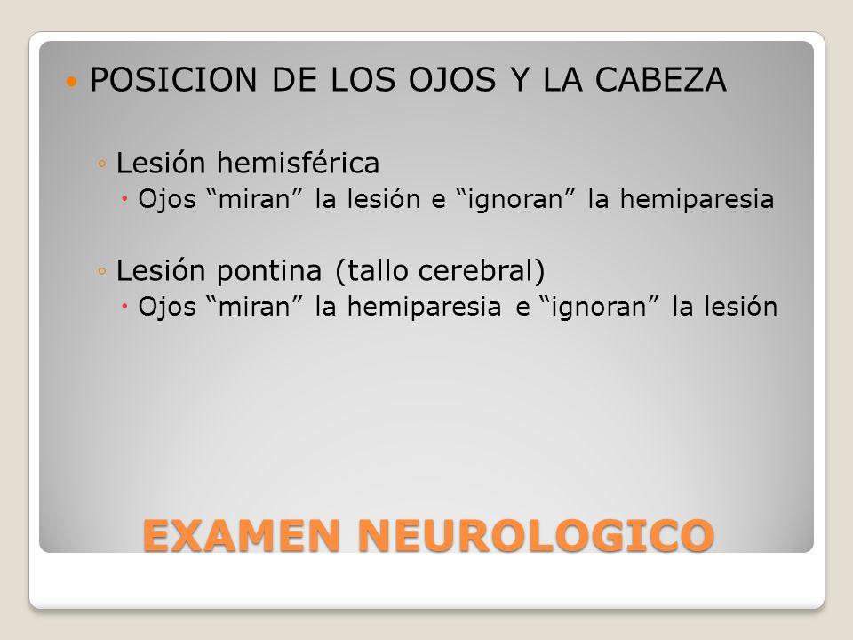 EXAMEN NEUROLOGICO POSICION DE LOS OJOS Y LA CABEZA Lesión hemisférica Ojos miran la lesión e ignoran la hemiparesia Lesión pontina (tallo cerebral) O