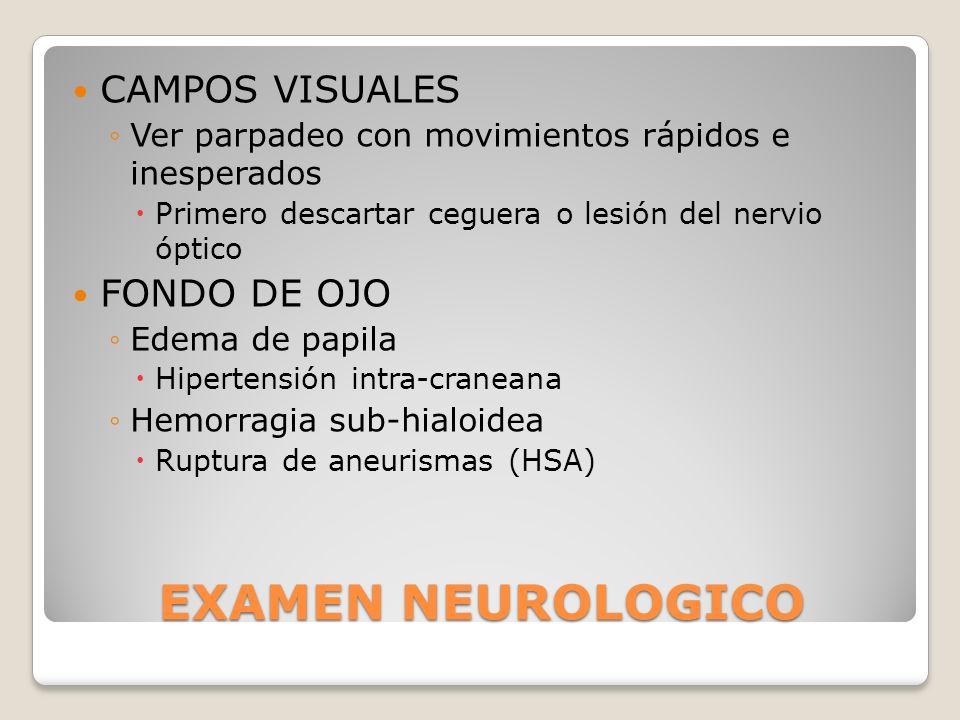 EXAMEN NEUROLOGICO CAMPOS VISUALES Ver parpadeo con movimientos rápidos e inesperados Primero descartar ceguera o lesión del nervio óptico FONDO DE OJ