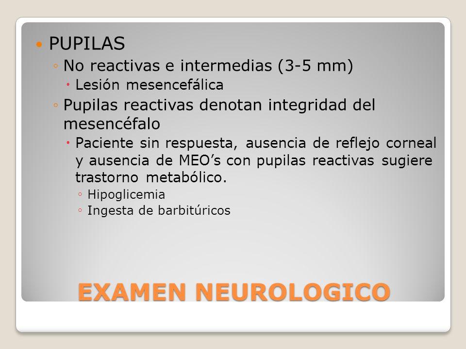 EXAMEN NEUROLOGICO PUPILAS No reactivas e intermedias (3-5 mm) Lesión mesencefálica Pupilas reactivas denotan integridad del mesencéfalo Paciente sin