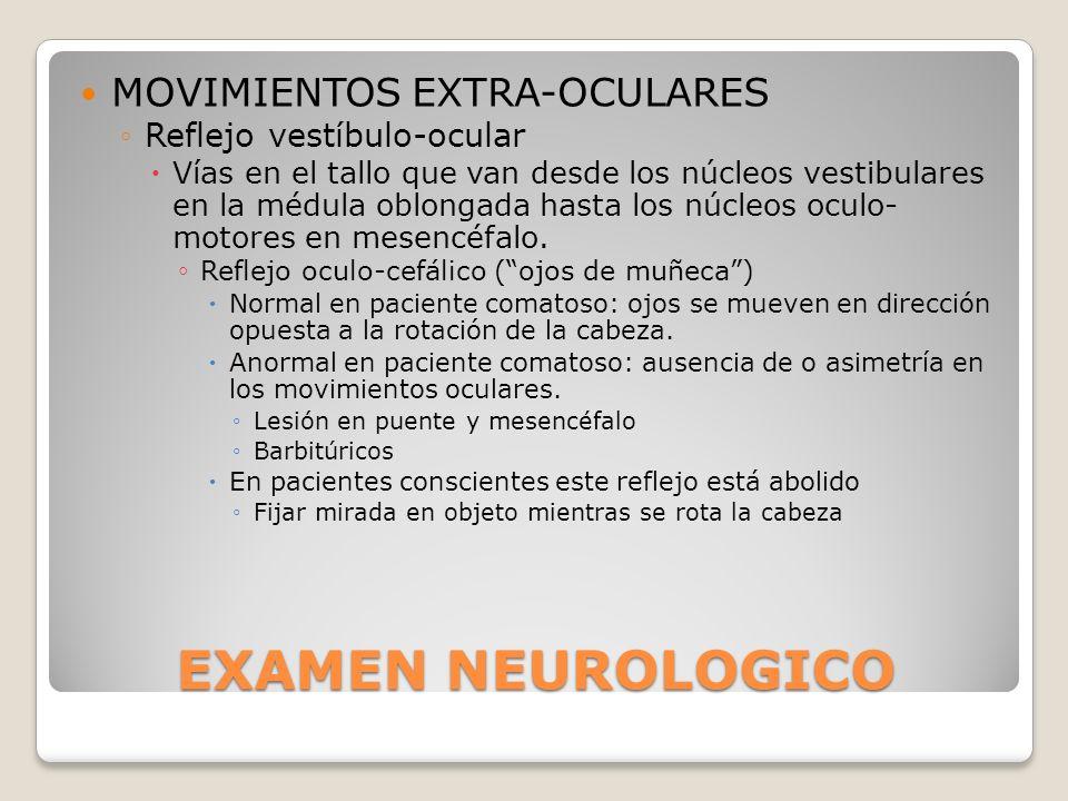 EXAMEN NEUROLOGICO MOVIMIENTOS EXTRA-OCULARES Reflejo vestíbulo-ocular Vías en el tallo que van desde los núcleos vestibulares en la médula oblongada